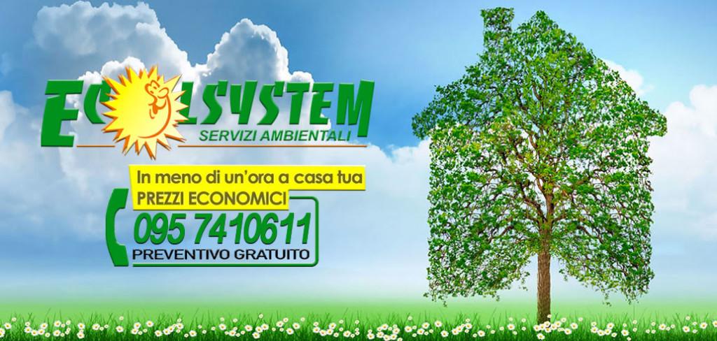 ecolsystem-home_numero_nuovo